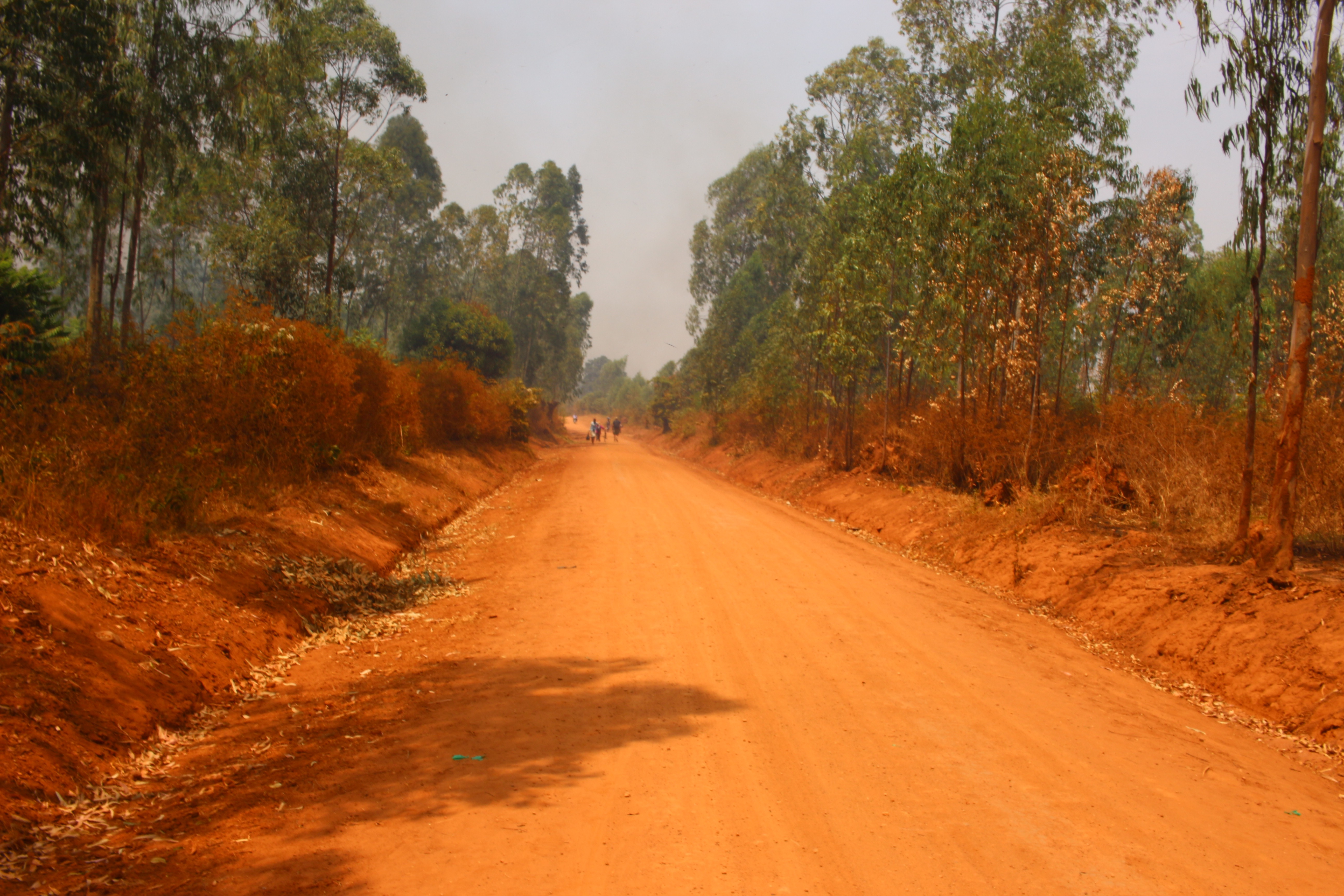 african-road